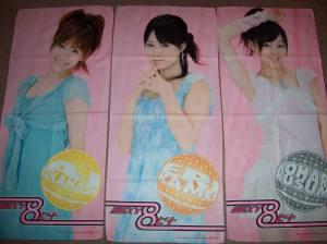 Aichan, Kamei, & Koharuchan microfiber towels.