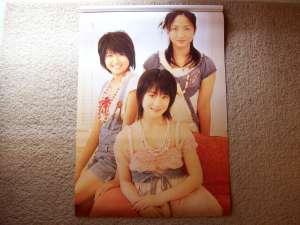 2008 Berryz Koubou calendar (January & February)