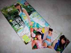 Bomb magazine 2009 issue w/ Koike Rina trading cards...