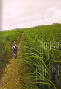 Ayukawa Honoka Scan0052
