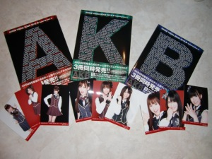 AKB48 2010 Visual Books