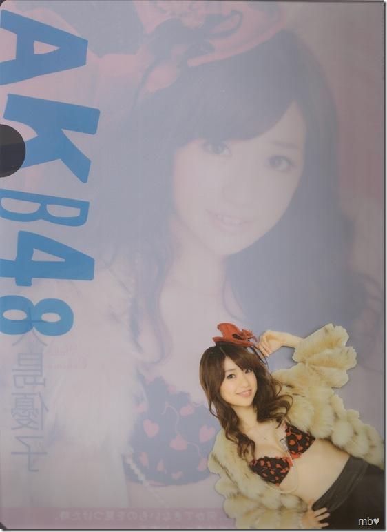 Oshima Yuko 2011 calendar clear file (back)