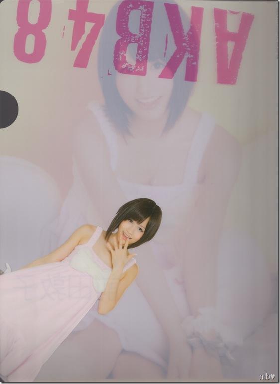 Maeda Atsuko 2011 calendar clear file (back)
