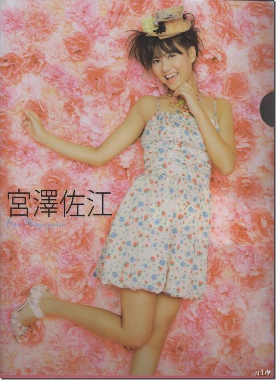 Miyazawa Sae 2011 calendar clear file (front)