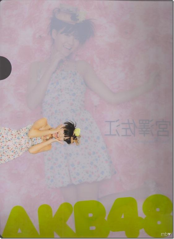 Miyazawa Sae 2011 calendar clear file (back)