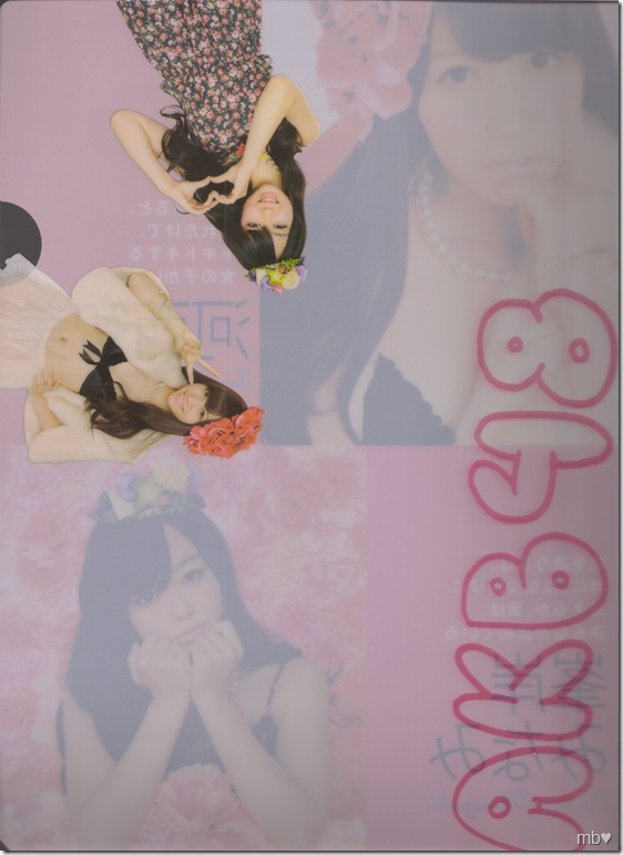 Kasai Tomomi & Minegishi Minami 2011 calendar clear file (back)
