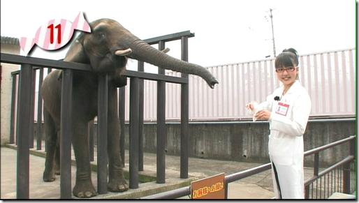Mano~feeding
