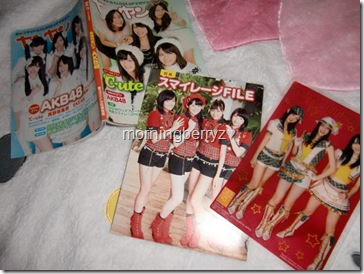 Yan Yan Vol.17 December 2010 with SKE48 clear card & Smileage file