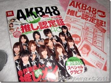 AKB48 Oshi book