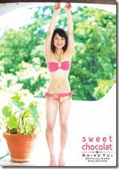 Koike Yui Official Card Collection sweet chocolat (13)