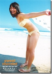 Koike Yui Official Card Collection sweet chocolat (17)