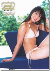 Koike Yui Official Card Collection sweet chocolat (35)