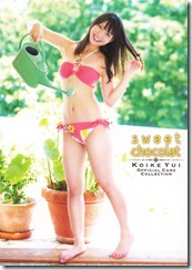 Koike Yui Official Card Collection sweet chocolat (7)