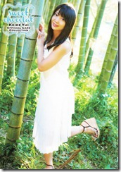 Koike Yui Official Card collection sweet chocolat (83)