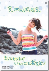 Koike Yui Official Card Collection sweet chocolat (8)