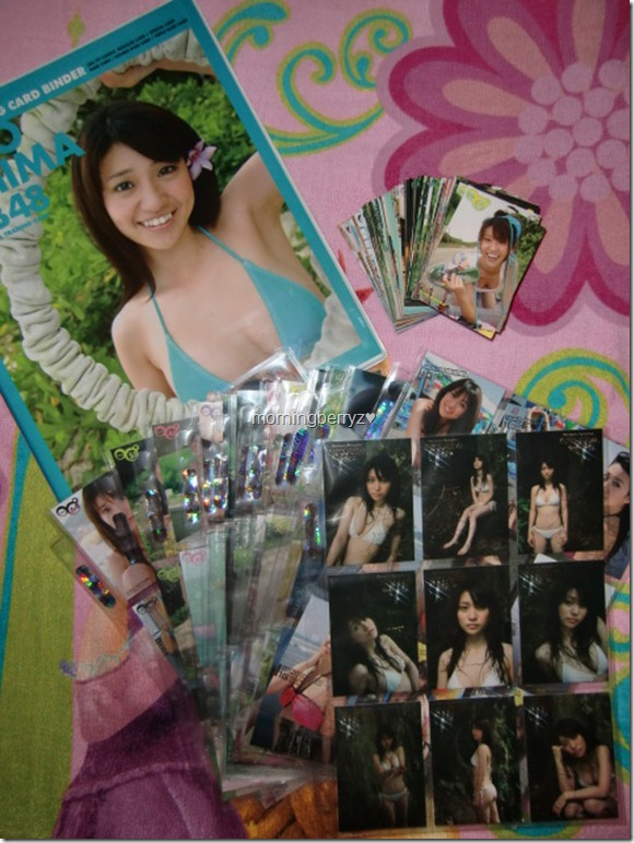 Oshima Yuko Hit's Premium Trading Card set complete with official card binder