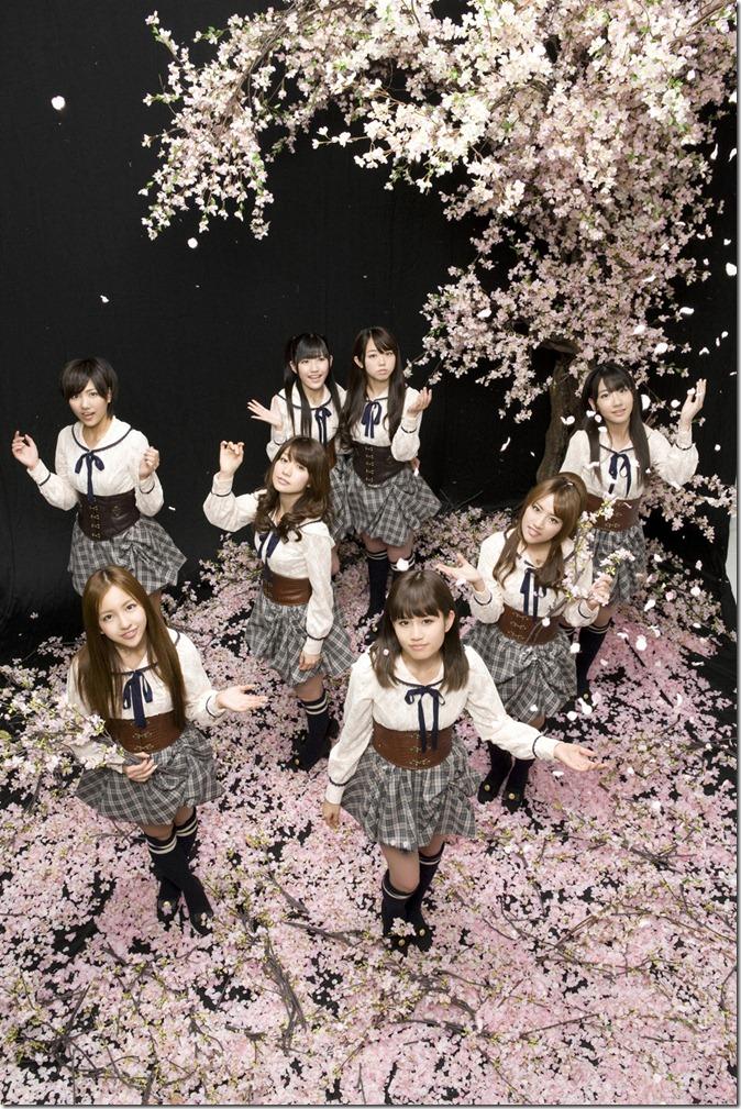 AKB48 (3)