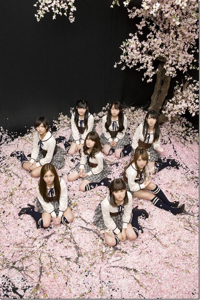 AKB48 (6)