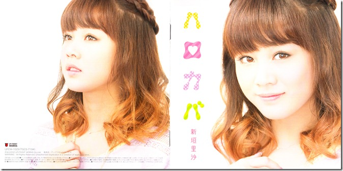 Niigaki Risa Hello Covers (2)