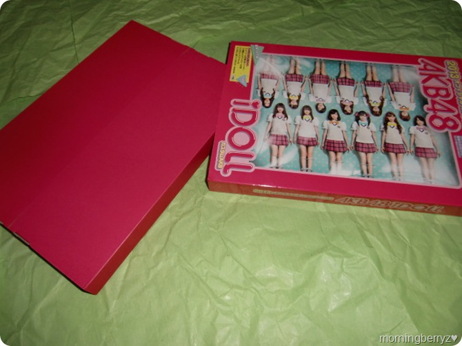 AKB48 2013 Official Calendar Box (2)