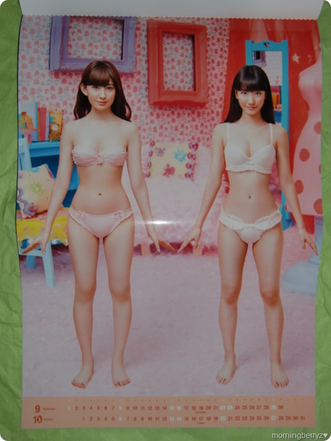 AKB48 2013 Official Calendar Box (9)