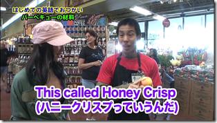Koike Yui in PINK BREEZE in HAWAII♥ (61)