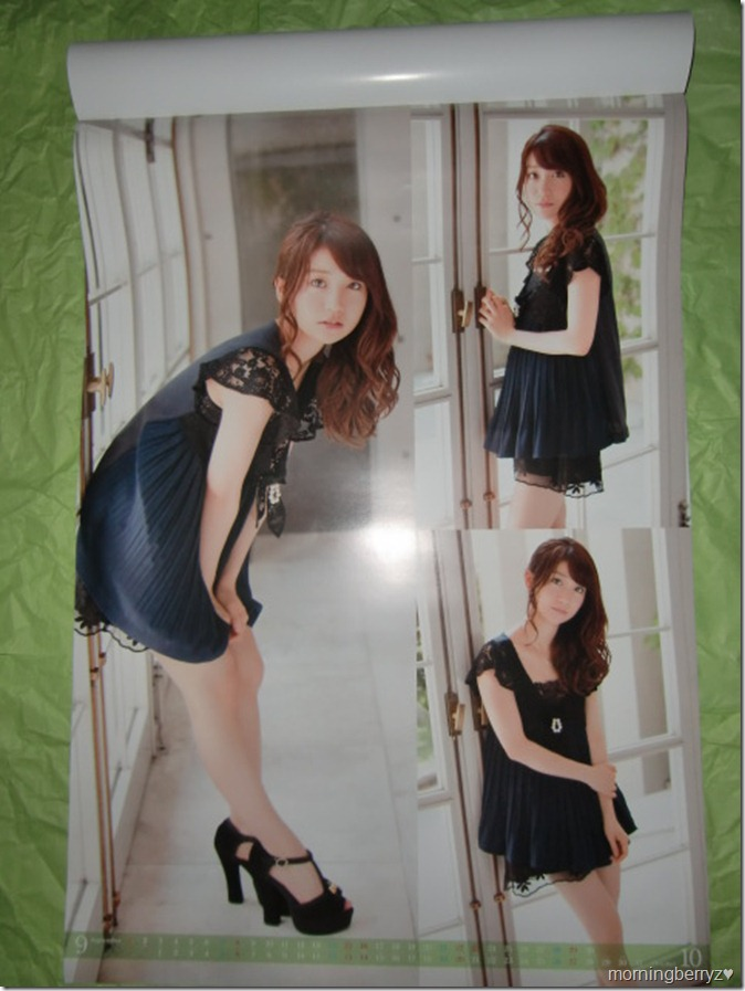 Oshima Yuko 2013 B2 sized calendar complete (6)