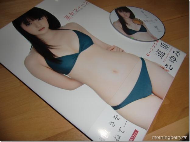 Michishige Sayumi Mille-Feuille shashinshuu with making of DVD
