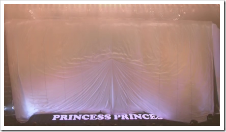 Princess Princess Tour 2012 (1)