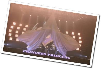 Princess Princess Tour 2012 (2)