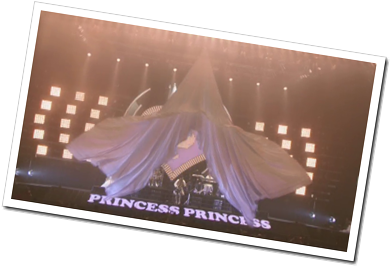 Princess Princess Tour 2012 (2)