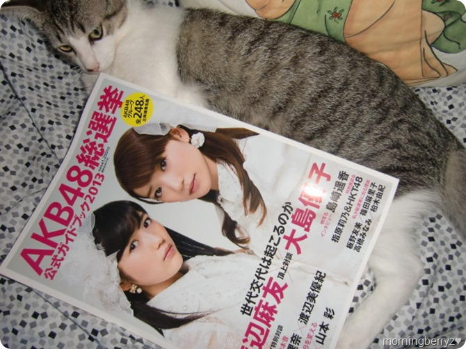 AKB48 Sosenkyo Official Guide Book