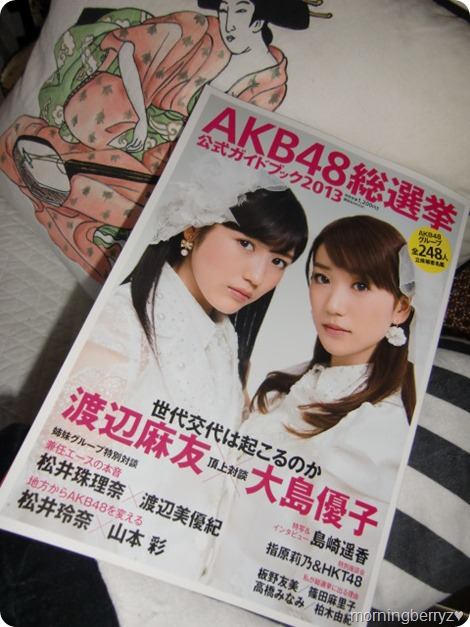 AKB48 Sousenkyo Official Guide Book