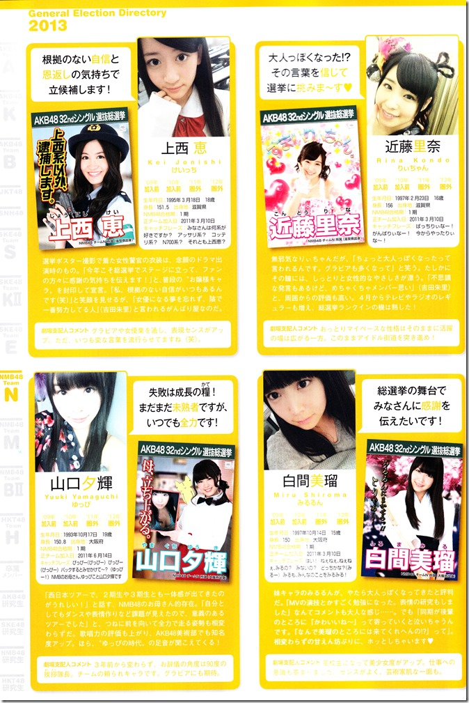 AKB48 Sousenkyo Official Guide Book (100)