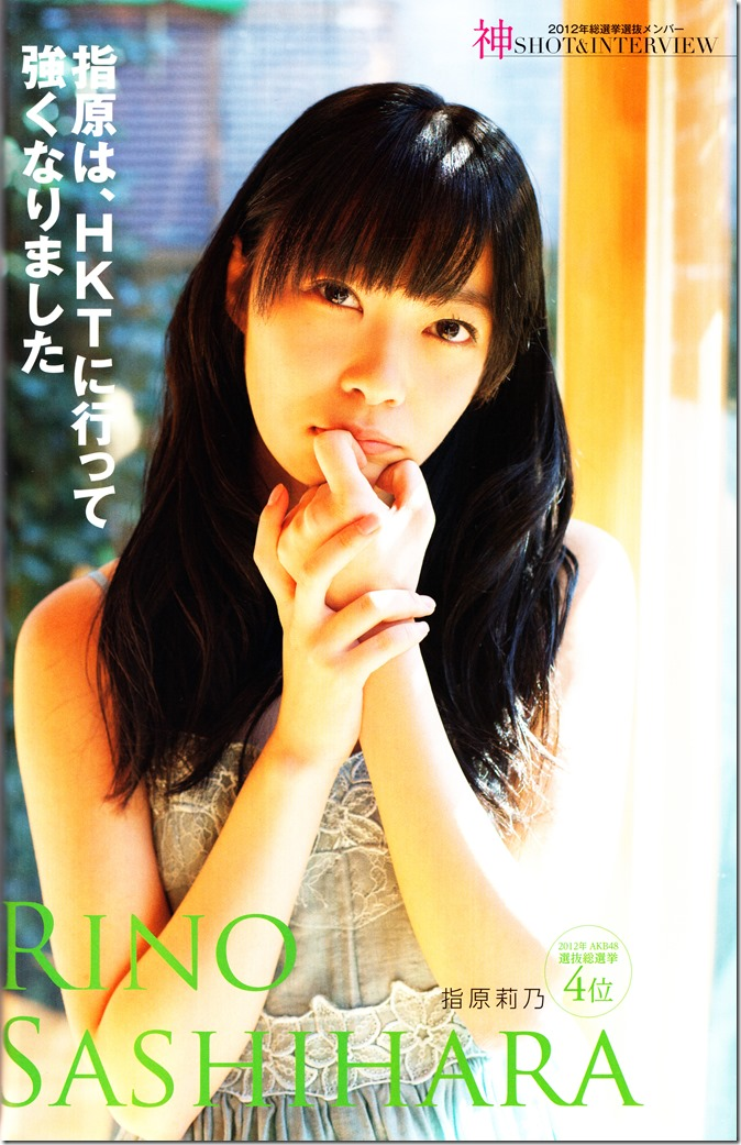AKB48 Sousenkyo Official Guide Book (37)
