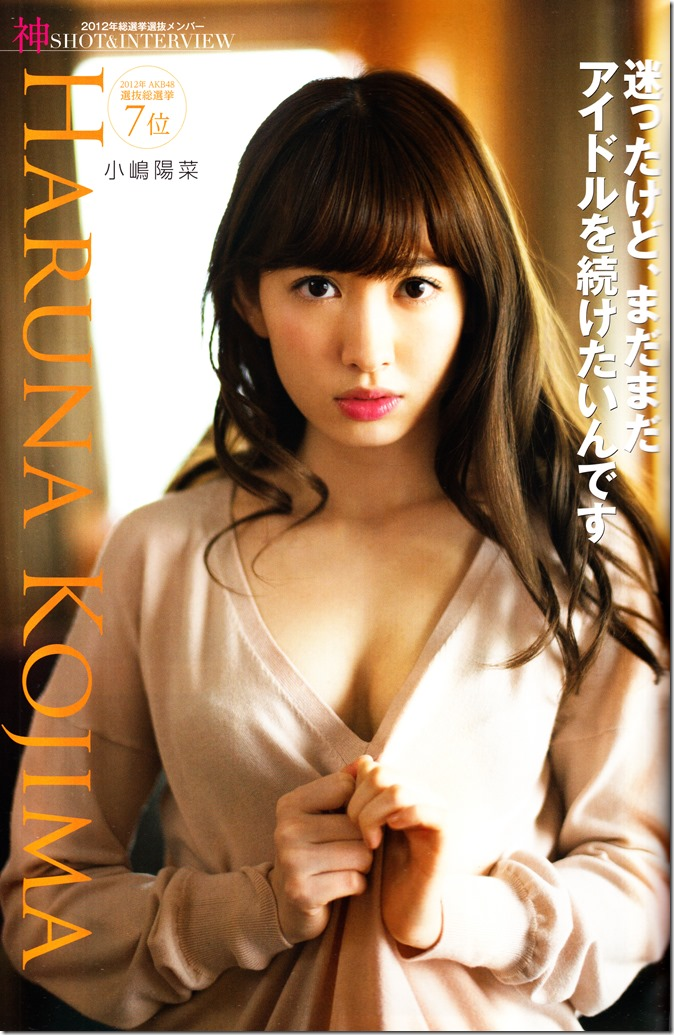 AKB48 Sousenkyo Official Guide Book (46)