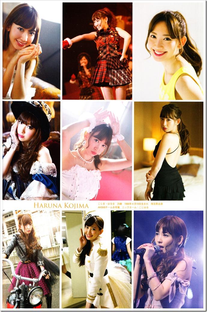 AKB48 Sousenkyo Official Guide Book (47)