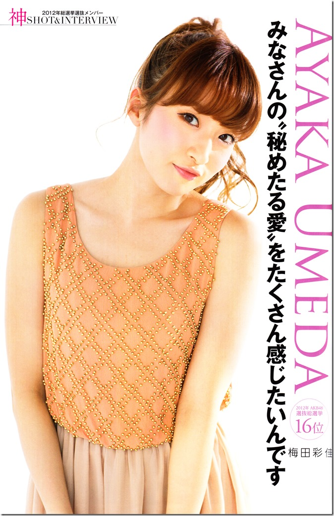 AKB48 Sousenkyo Official Guide Book (70)