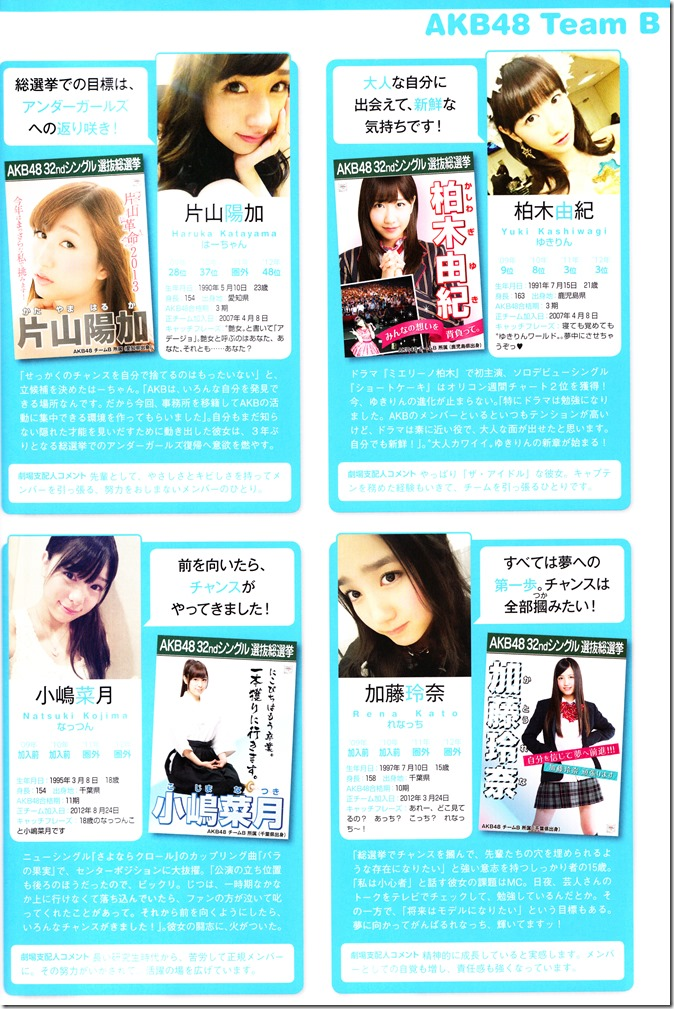 AKB48 Sousenkyo Official Guide Book (84)