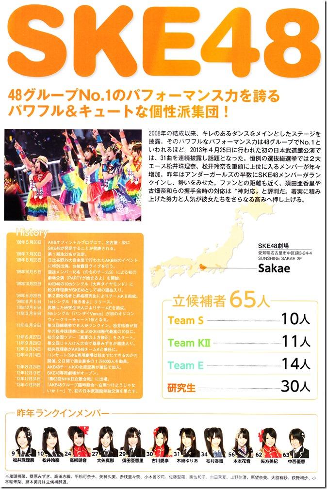 AKB48 Sousenkyo Official Guide Book (88)
