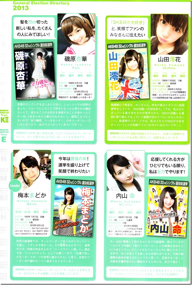 AKB48 Sousenkyo Official Guide Book (94)