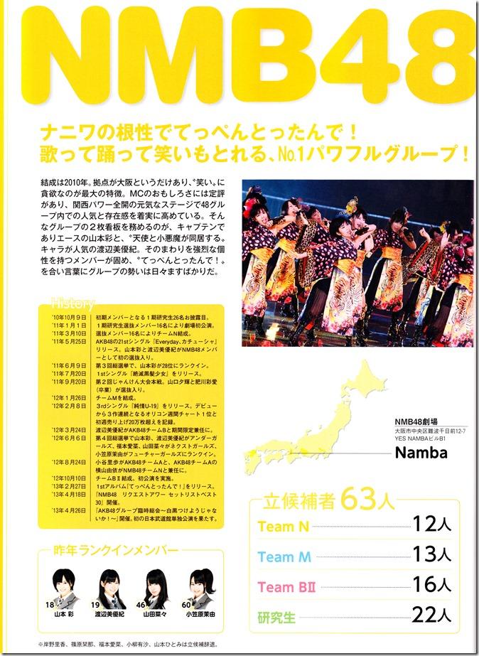 AKB48 Sousenkyo Official Guide Book (98)