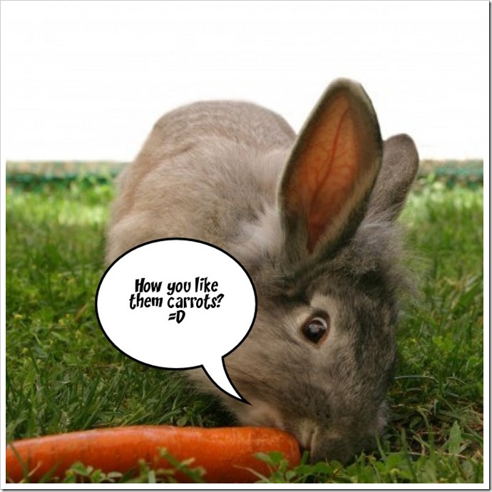 The bunny says...