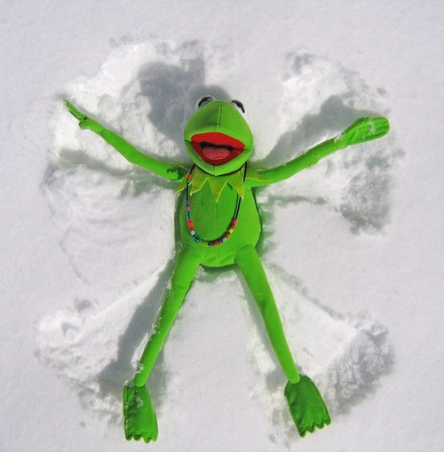 Kermit snow angel