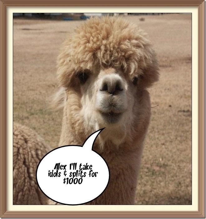 Llama says...
