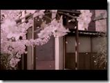 Morning Musume Sakuragumi Sakura mankai (1)