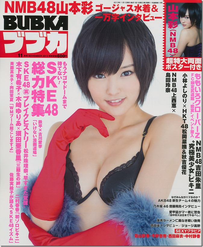 Bubka no.11 November 2013 (1)