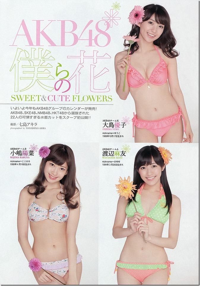 Weekly Playboy no.45 November 11th, 2013 (8)