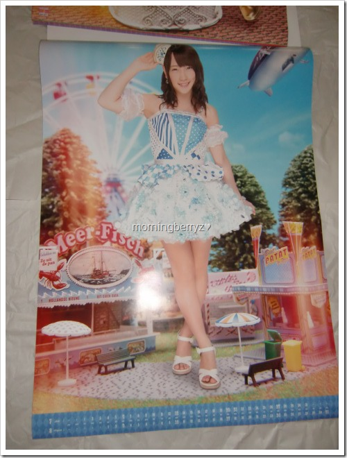 Kawaei Rina 2014 Wall Calendar (5)