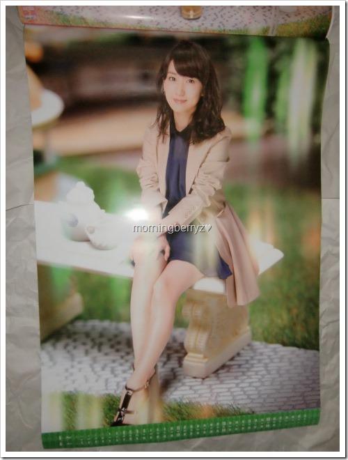Oshima Yuko 2014 Wall Calendar (4)